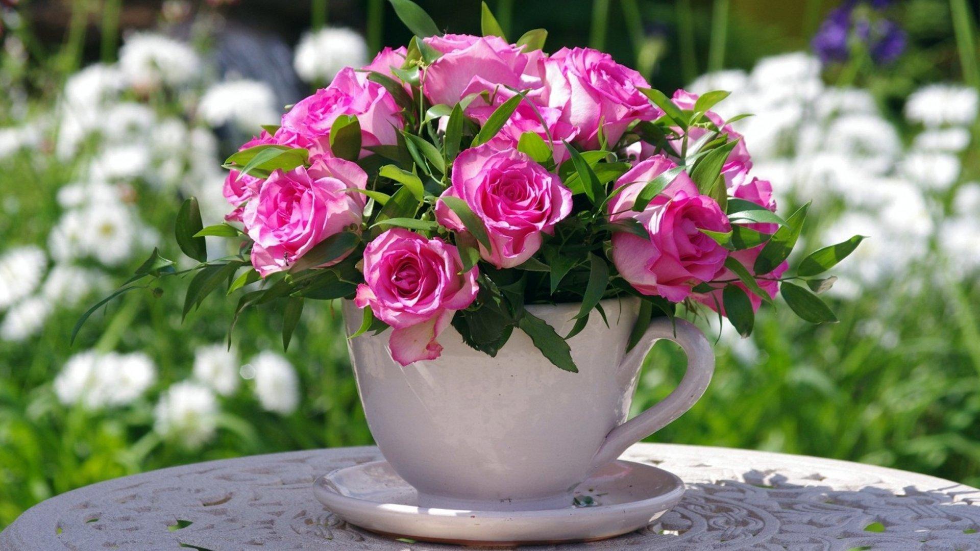 Красивые фото цветов доброго утра впитала